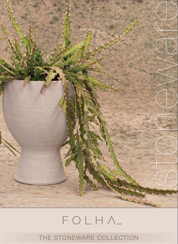 folha stoneware, Folha, Folha Plant Shop, Urban Plants, City Nursery, Urban Jungle, Plants Cape Town, Garden Shop, House Plants, Indoor Plants, gardening